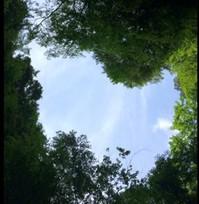 ♡空.jpgのサムネール画像のサムネール画像